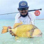 Addu with Triggerfish