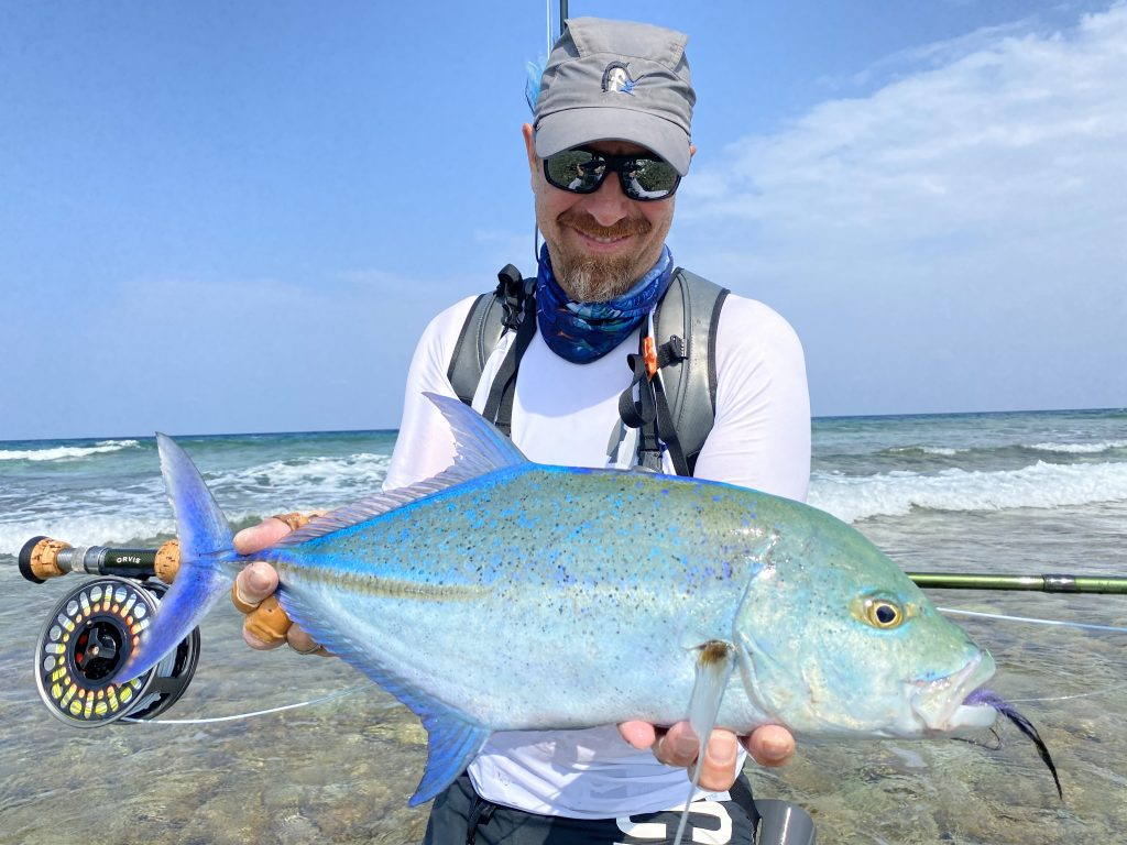 Rok with Bluefin
