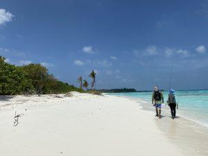 fly fishing maldives trip